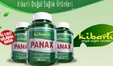 panax-kibarli-faydalari