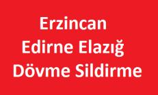 Edirne Elazığ Erzincan Dövme Sildirme