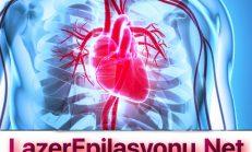 Özel Hastane Kalp ve Damar Hastalıkları Muayene Fiyatı Ne Kadar?